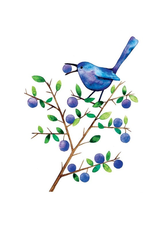 Sloe Eater Bird Watercolor Illustration Print Handmade Decoration Purple Feather Leaves Nature