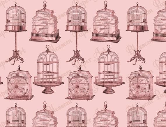 rosa vogelk fige vintage scrapbook digitales scrapbooking. Black Bedroom Furniture Sets. Home Design Ideas