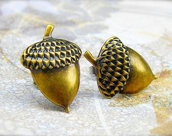 Brass Acorn post earrings