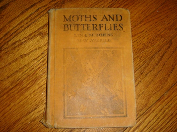 Moths and Butterflys Childrens Book 1929 Butterfly Illustrated Colored Lithos Gardens Bugs
