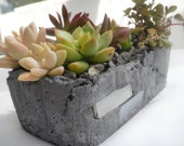 Small hand created rustic planter with succulent arrangement - RotdCreations