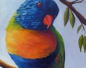 "SALE! Original bird painting ""Lorikeet"" 20"" x 30"" oil on canvas of a Lorikeet at the Portland Zoo.  Home decor art."