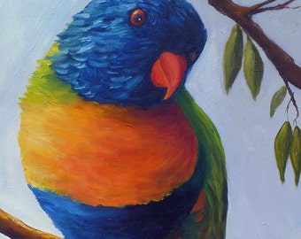 "SALE! Original bird painting ""Lorikeet"" 20"" x 30"" oil on canvas of a Lorikeet at the Portland Zoo.  Home decor art."