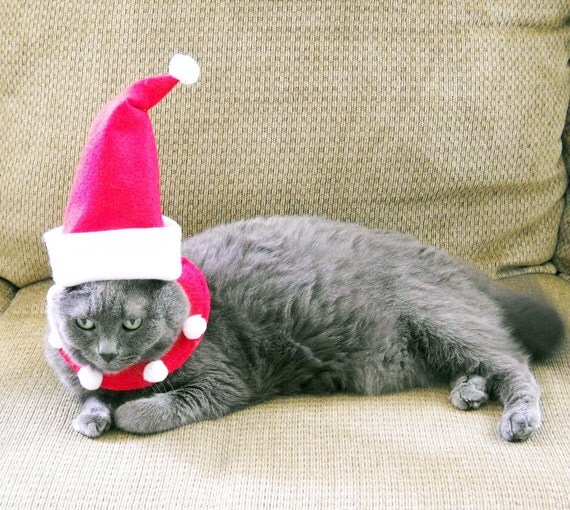 Christmas Pet Santa Costume Small - Pet Santa Suit - Cat Santa Costume - Small Dog Santa Suit