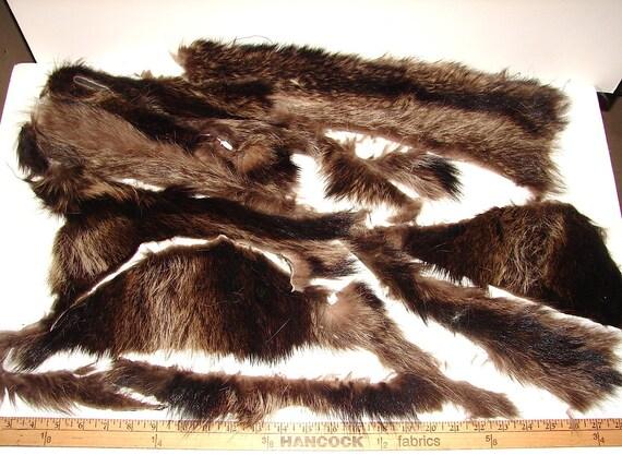 SC-71 Genuine Raccoon Fur coat remnants pieces scrap craft supplies