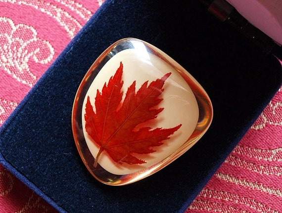 Holiday Sale - Cute vintage maple leaf brooch. Features a real maple leaf contained within a lucite brooch / pin.