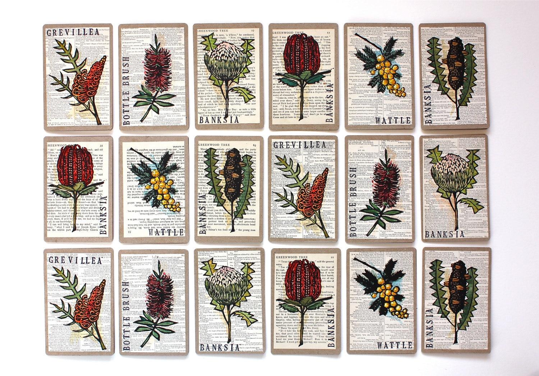 Australian Native Flowers Embroidery Patterns | Makaroka.com