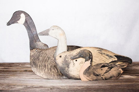 Early 1900's decoys