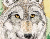 "ACEO original watercolor painting ""Gray Wolf"""