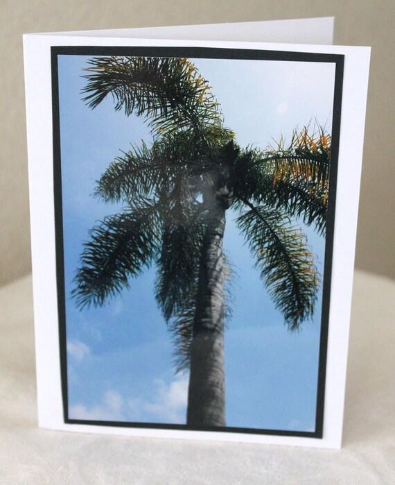 photo card, California palm tree photograph