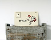 1955 R is for Rooster Flash Card - Large Size - Kenworthy Visual Aid Picture Phonic Card