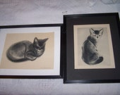 sale Two framed vintage cat prints from Clare Turlay Newberry