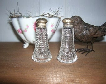 Vintage Sterling Silver and Glass Salt and Pepper Shaker Set