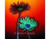 Acid Flowers No 1