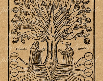 Tree Of Knowledge 086 Science Organization Tree Woodcut Phylogeny Genus Classification