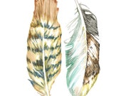 PRINT of feather painting - feather art - sea hawk - in copper rust / sienna brown / indigo blue / teal / yellow ocher / mint