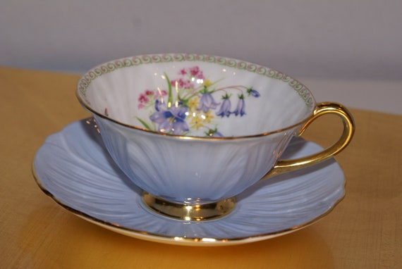 Lovely Shelley Oleander Fine Bone China Cup and Saucer
