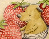 Dog in tights with giant strawberries watercolor, pen and ink original illustration