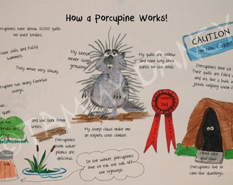 How a Porcupine Works Original illustrated print 8 1/2 x 11