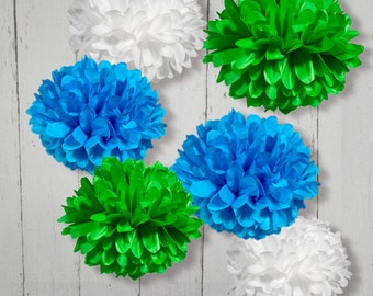 Tissue Paper Pom Poms Set of 6
