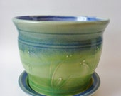 Blue and Lime Green Planter with Delicate Flowers