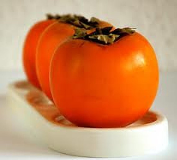 Heirloom Persimmon Tree, Excellent for Pudding, Baking, Fruit, 25 Seeds, Cheap Seeds