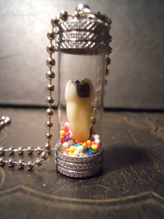 Sweet Tooth Real Human Tooth with Cavity in Candy Sprinkle Necklace