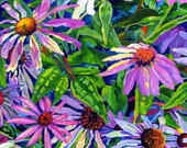 "Giclee Canvas Print - Echinacea - 8"" x 10""  - Signed Limited Edition"