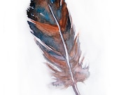 Feather-Watercolor painting-Art original-Watercolor painted feather-