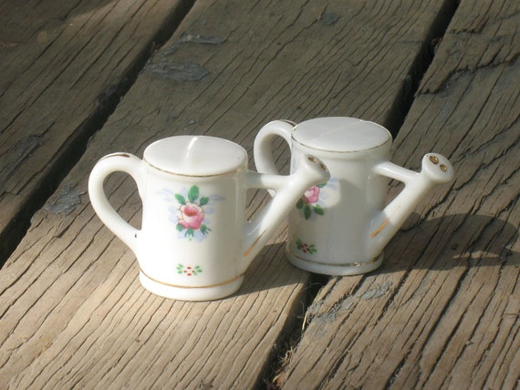Cute Watering Can Salt And Pepper Shakers Shabby By