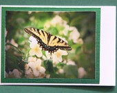 Yellow and black butterfly picture Magnetic Bookmark