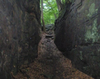 Path Between the Rocks- Park Series Photo 5x7 and 8x10 available