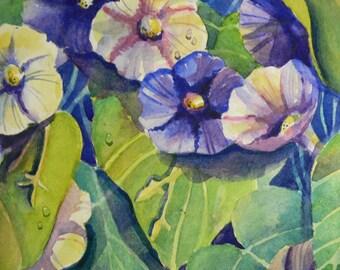 Purple Pink Garden Fresh Morning Glories watercolor art print by Sally T. Crisp