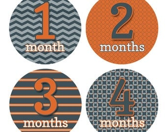 Baby Month Stickers Milestone Sticker Set Newborn Monthly Stickers Baby's First Year Stickers Month by Month Photo Prop Baby Boy BMST024