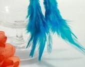 Trendy Blue Feather Earrings