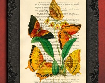 yellow butterfly, orange butterfly wall art, floral decoration