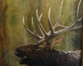 "Elk Painting, Original Oil,  ""Calling"""