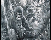 "Waiting for a Friend 6"" x 7.5"" Silverback Gorilla Black and White Print"