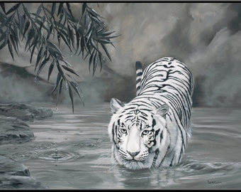 """Torrit the Tiger 9"""" x 6"""" White Tiger in Water print"""