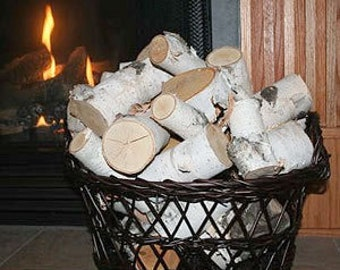 Pieces of White Birch Logs