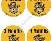 DIY Download - Baby Shower Monthly Onesies Design -  University of Missouri Tigers