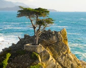 Daughter of the Pacific, Carmel, California (3x2 photo)
