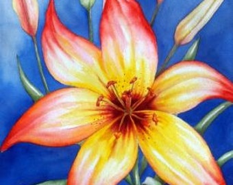 Sunset Lily