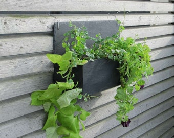 Wall jardiniere in natural slate GM