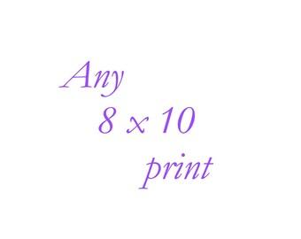 Any 8x10 Print - Your Choice