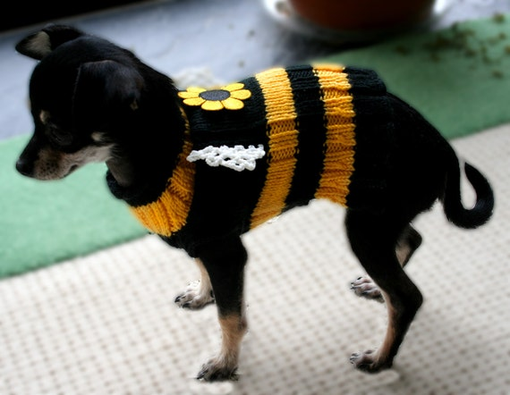 Knitting Pattern For Xs Dog Sweater : BEE Dog Sweater Knitting Pattern PDF XS-M