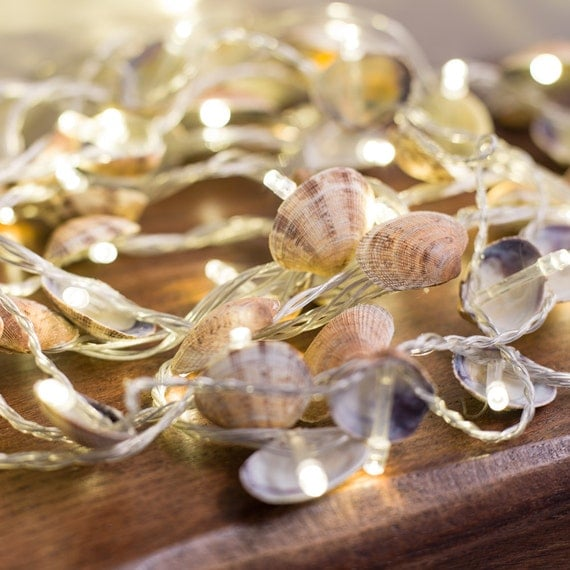 Seashell String Lights Outdoor : Clam seashell fairy lights. Indoor and outdoor use. Country