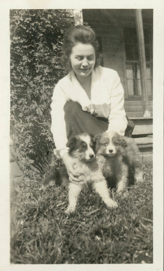 vintage photo Lady w Two COllie Puppy Dogs