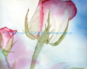 Watercolor Painting Rose Art, Rose Painting, Rose Watercolor,  Floral Art, Flower Art, Print Of Original Watercolor Titled Sky Rose
