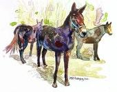 watercolor painting of mules - farm scene